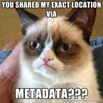 Metadata Cat